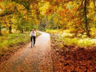 kam na bicykli v jeseni